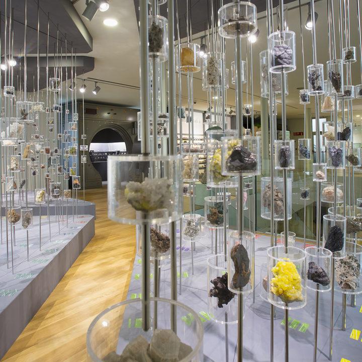 Museo de Historia Natural Luís Iglesias